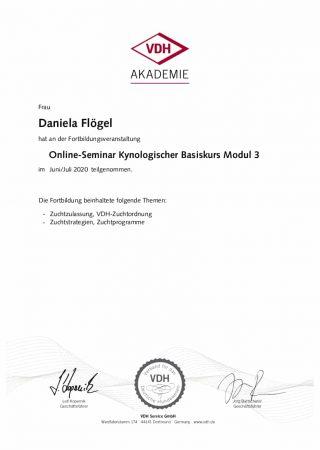 kynologischer basiskurs modul 3